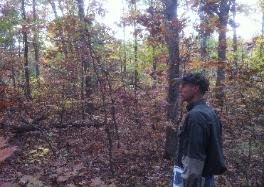 Wildlife Biologist Mark Banker getting set to create Golden Winged Warbler habitat. Thick, early successional habitat benefits many species of wildlife.