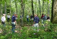 Forestry field tours - Call us if you would like to schedule some for your family or organization.