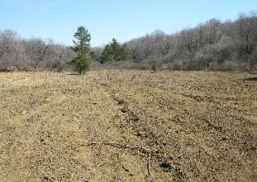 Forest management in PA means different things to different people. Each forest landowner is unique and has unique goals. This forest is being managed for timber and wildlife. Wildlife foodplots can be an important food supplement for deer and turkey.